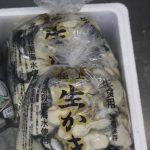 今シーズンの東松島産牡蠣 終了となりました。