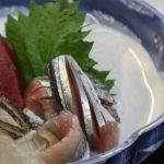 9月8日 火曜日お魚day